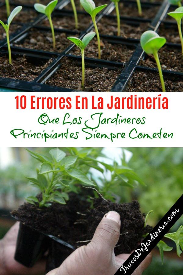 Errores En La Jardinería