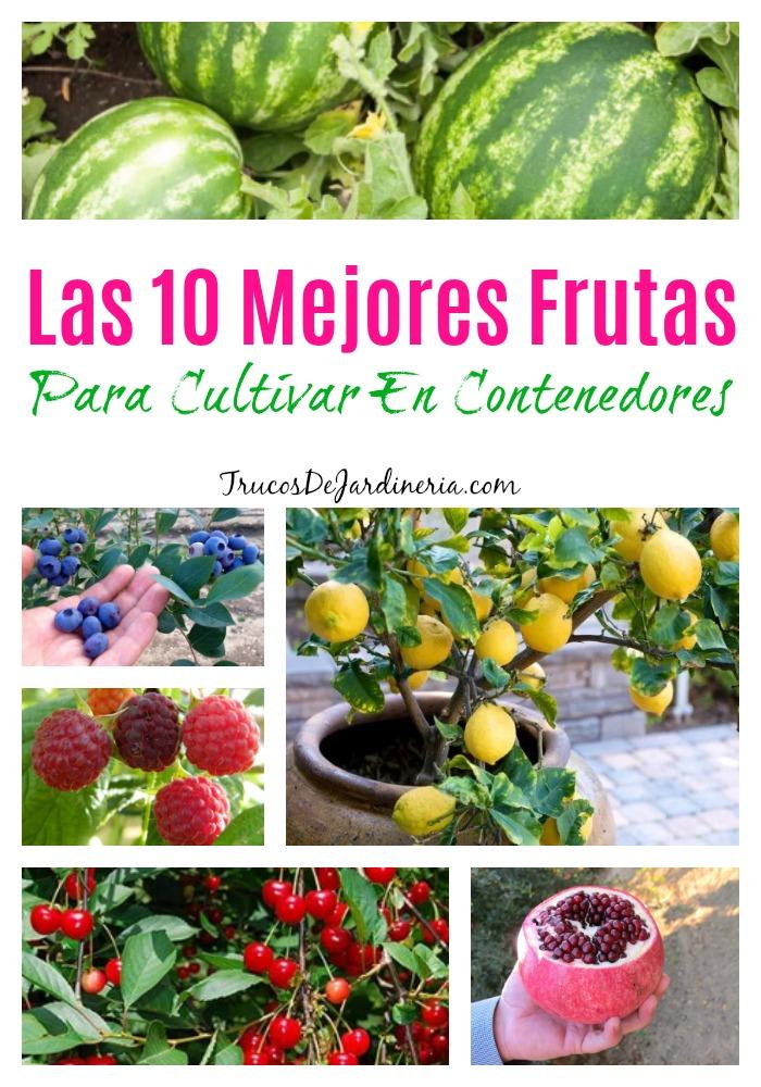 Frutas Para Cultivar En Contenedores
