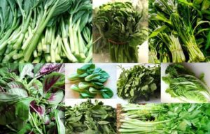 verduras asiáticas