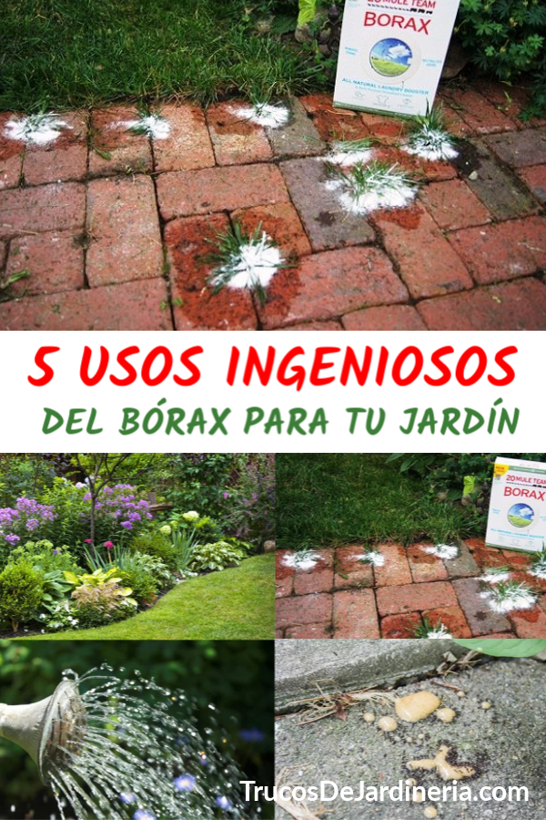 Borax Para Tu Jardin