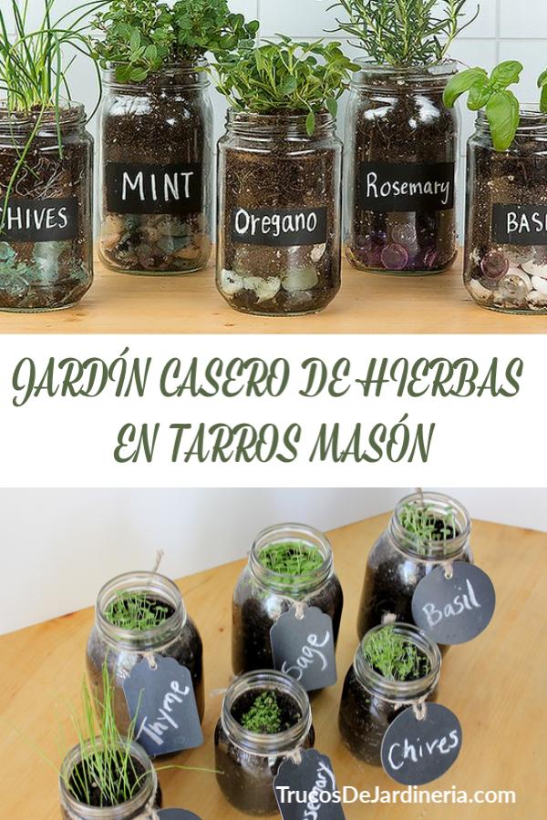 HIERBAS EN TARROS MASÓN