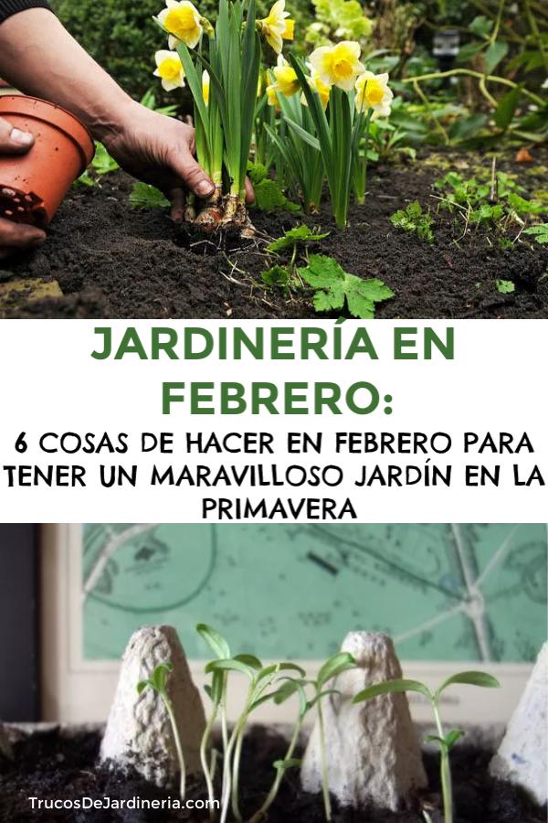 JARDINERÍA EN FEBRERO