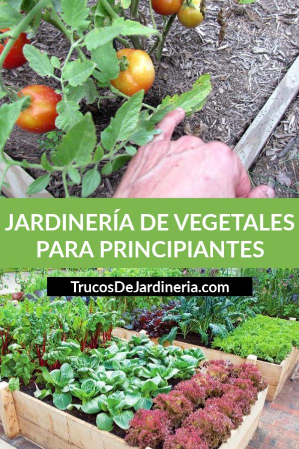 Jardinería De Vegetales Para Principiantes