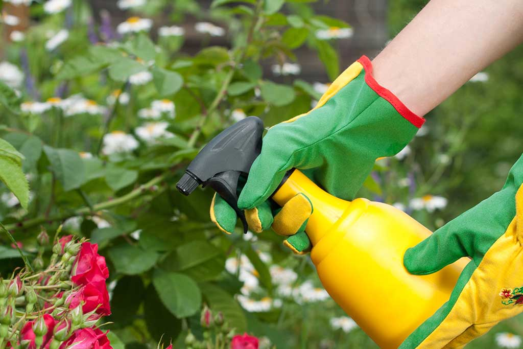 spray de jardin