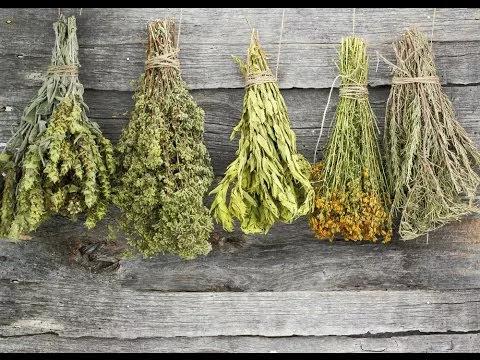 hierbas secas