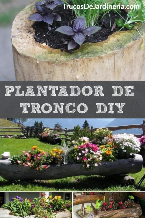 Plantador De Tronco DIY