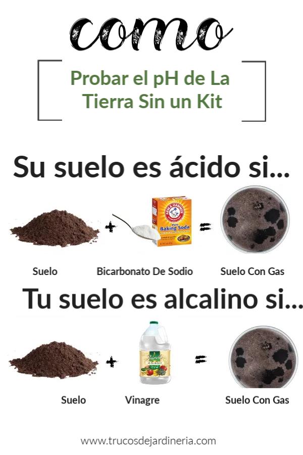 Probar el pH de La Tierra Sin un Kit