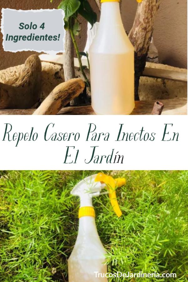 Insecticida DIY de Jardín
