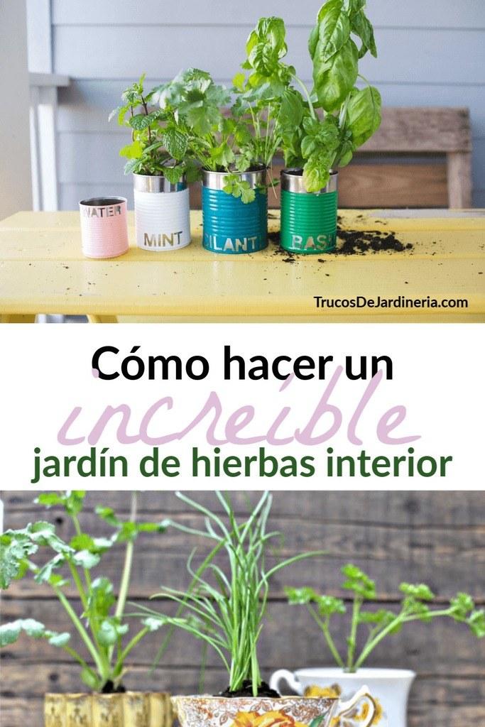 jardín de hierbas en interiores