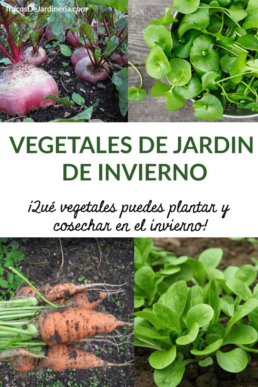 Jardín de Vegetales de Invierno